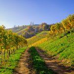 Wandern in der Steiermark – Wanderwege, Ausrüstung, Vorbereitung