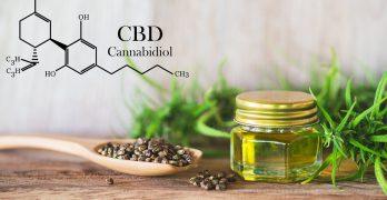 CBD Öl – Wirkung, Dosierung, Anwendung, Vorteile